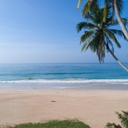 Glorious Habraduwa beach sands are just 20 metres from Saldana Beach Villa's front fence.