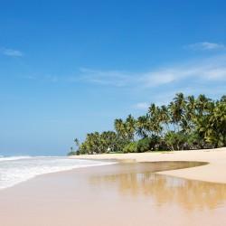 Saldana Beach Villa is on the huge Habraduwa Beach. Golden sands with very few beach-goers.