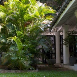 The Well House Unawatuna lush tropical gardens and lattice zones create a feeling of secrecy