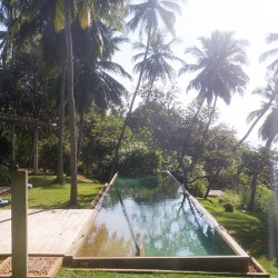 Walatta House in Tangalle lap pool overlooking the Indian ocean
