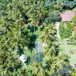 Walatta House in Tangalle lies beneath a carpet of green in a drone view