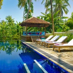 Coconut Grove Villa's swimming pool and its sunbeds are framed in cocouts