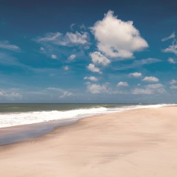 Walking distance to the beach. Online booking for luxury villas in Sri Lanka