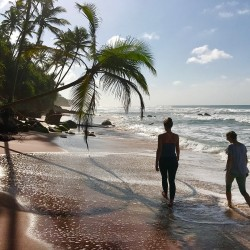 Meda Gedara Beach Villa Swimming and surfing are just minutes away