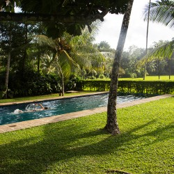 Only a low hedge separates the Ivory House lap pool from the paddy fields