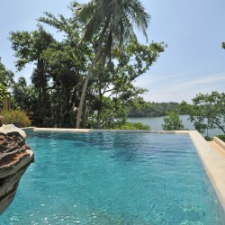 Crocodile Rock Villa's swimming pool features the Crocodile Rock