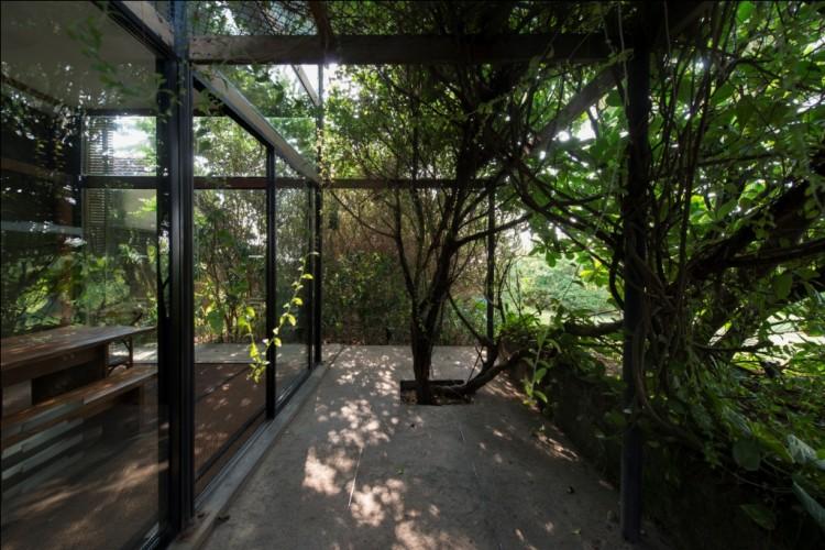 Maggona Beach Villa uses the jungle to create privacy and control the temperature inside