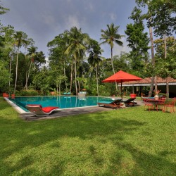 The pool is the ideal place to relax or cool off beneath umbrellas or on the sun lounges at Villa Sepalika Unawatuna