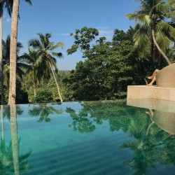 Relax high over the palm trees at Modern Luxury Villa Wambatu's swimming pool