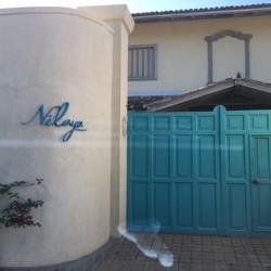 Nilaya Beach Villa Thalpe high walls keep out the road noise
