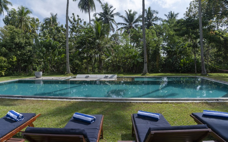 Villa Ronnaduwa pool views look directly into the cinnamon plantation and jungle